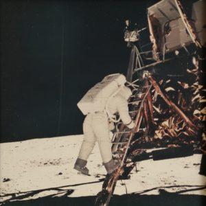lune, fauve, encheres, vente, spatiale, espace, drouot, estimation, expert, expertise, amm